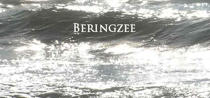 Beringzee Eilanden