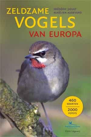 Zeldzame Vogels in Nederland Dwaalgasten